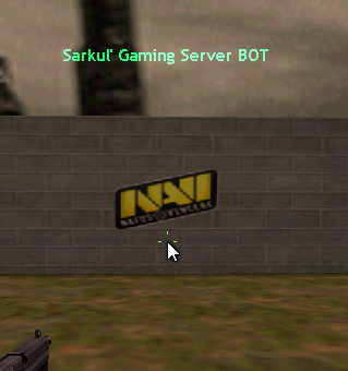 Natus vincere Logo (Spray)